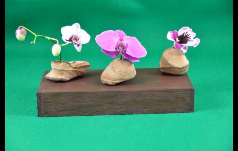 brown tone rock vases